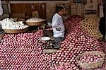 Vendor Selling Red Onions at Market, Madurai, Tamil Nadu, India, Stock Photo - Premium Rights-Managed, Artist: Edward Pond, Code: 700-03445354