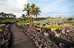 Kona, The Big Island, Hawaii, USA Stock Photo - Premium Rights-Managed, Artist: Mark Downey, Code: 700-03445648
