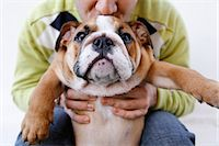 Man Holding Dog Stock Photo - Premium Royalty-Freenull, Code: 600-03446122