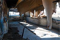 Interior of Old, Abandoned, 1961 Cadillac Eureka Hearse, Junk Yard, Desert Southwest, Soutwestern United States, USA Stock Photo - Premium Rights-Managednull, Code: 700-03451073
