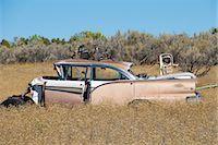 Old, Abandoned Cars in Junk Yard, Desert Southwest, Southwestern United States, USA Stock Photo - Premium Rights-Managednull, Code: 700-03451077