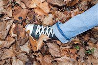 Woman Walking in Autumn Leaves Stock Photo - Premium Royalty-Freenull, Code: 600-03451498