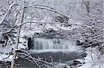 A waterfall in winter surrounded by snow covered trees, Rensselaerville, New York State, United States of America, North America Stock Photo - Premium Rights-Managed, Artist: Robert Harding Images, Code: 841-03454231