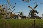 Windmill and Farm House, Sint Jansklooster, Overijssel, Netherlands Stock Photo - Premium Rights-Managed, Artist: Ben Seelt, Code: 700-03456533