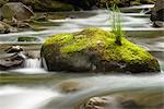 Rushing water in Sol Duc river, Olympic National Park, Washington Stock Photo - Premium Royalty-Freenull, Code: 635-03457625