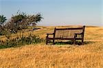 Vista point in South Sussex, England. Empty seat in a field.