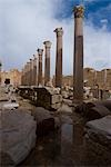 Severan Basilica, Leptis Magna, Libya Stock Photo - Premium Rights-Managed, Artist: Arcaid, Code: 845-03464325