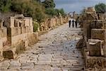 Roman street, Leptis Magna, Libya Stock Photo - Premium Rights-Managed, Artist: Arcaid, Code: 845-03464326