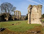 Croxden Abbey. Detail. Stock Photo - Premium Rights-Managed, Artist: Arcaid, Code: 845-03464711