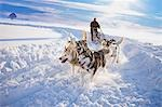 Dog sledge Stock Photo - Premium Royalty-Free, Artist: AlaskaStock, Code: 649-03465383