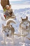 Winter tour with dog sledge Stock Photo - Premium Royalty-Free, Artist: AlaskaStock, Code: 649-03465406