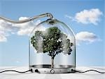 Tree inside Pressurized Glass Dome Stock Photo - Premium Rights-Managed, Artist: Marc Simon, Code: 700-03466505