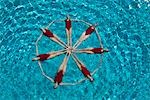 Synchronised swimmers form a circle Stock Photo - Premium Royalty-Free, Artist: Aflo Sport               , Code: 693-03474149