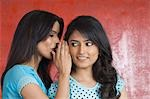 Teenage girl whispering to a young woman Stock Photo - Premium Royalty-Free, Artist: Michael A. Keller, Code: 630-03479450