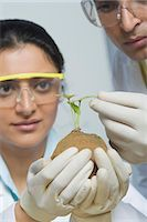 Scientists examining a plant Stock Photo - Premium Royalty-Freenull, Code: 630-03480971