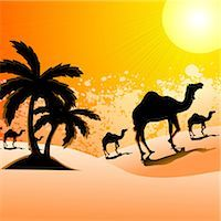 rajasthan camel - Silhouette of camels walking in a desert landscape, Rajasthan, India Stock Photo - Premium Royalty-Freenull, Code: 630-03482216
