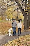 Couple Walking Dog in Park in Autumn Stock Photo - Premium Rights-Managed, Artist: Jerzyworks, Code: 700-03484875