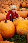Toddler in Pumpkin Patch, Ontario, Canada Stock Photo - Premium Rights-Managed, Artist: Derek Shapton, Code: 700-03484972