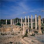 Columns of Hellenistic gymnasium rebuilt by the Romans, and Palaestra exercise ground, at Salamis, main city of Cyprus between 1075 BC and 650 AD, North Cyprus, Europe