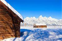 Moulton Barn in Winter, Grand Teton Mountain National Park, Wyoming, USA Stock Photo - Premium Rights-Managednull, Code: 700-03501245