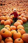 Toddler in Pumpkin Patch, Ontario, Canada Stock Photo - Premium Rights-Managed, Artist: Derek Shapton, Code: 700-03502761