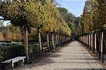 France, Ile de France, Sceaux, alley Stock Photo - Premium Royalty-Freenull, Code: 610-03504720
