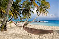 Hammocks hanging between palm trees, Kuanidup Grande, Comarca de Kuna Yala, San Blas Islands, Panama, Central America Stock Photo - Premium Rights-Managednull, Code: 841-03505200