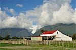 Farm in front of Fox Glacier, Cook Flat, West Coast, South Island, New Zealand Stock Photo - Premium Rights-Managed, Artist: Jochen Schlenker, Code: 700-03508435