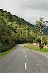 Harihari Highway and Native Forest, West Coast, South Island, New Zealand Stock Photo - Premium Rights-Managed, Artist: Jochen Schlenker, Code: 700-03508451