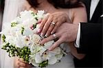 Bride and Groom's Hands Stock Photo - Premium Rights-Managed, Artist: Ikonica, Code: 700-03508826