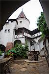 Bran castle (Dracula castle), Bran, Transylvania, Romania, Europe Stock Photo - Premium Rights-Managed, Artist: Robert Harding Images, Code: 841-03518188