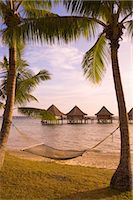 Kia Ora Resort, Rangiroa, Tuamotus, French Polynesia, South Pacific, Pacific Stock Photo - Premium Rights-Managednull, Code: 841-03518565