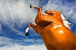 Fiberglass Horse Stock Photo - Premium Rights-Managed, Artist: David Mendelsohn, Code: 700-03520378