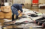 Man Working at Tsukiji Central Wholesale Market, Tokyo, Japan Stock Photo - Premium Rights-Managed, Artist: Ikonica, Code: 700-03520455