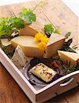Assorted Cheese on a Tray Stock Photo - Premium Royalty-Freenull, Code: 659-03520802