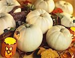White Pumpkins with Pumpkin Lanterns Stock Photo - Premium Royalty-Freenull, Code: 659-03520901