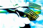 Knives and forks Stock Photo - Premium Royalty-Free, Artist: Aflo Relax, Code: 659-03521952