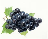 Black grapes with vine leaves Stock Photo - Premium Royalty-Freenull, Code: 659-03524099