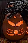 Halloween decorations: pumpkin lantern, cobweb glove, spider Stock Photo - Premium Royalty-Freenull, Code: 659-03524244