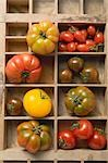 Various types of tomatoes in type case Stock Photo - Premium Royalty-Free, Artist: Beanstock Images, Code: 659-03526346