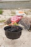 Barbecue by a river Stock Photo - Premium Royalty-Free, Artist: Kevin Dodge, Code: 659-03529485