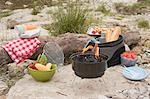 Barbecue on a river bank Stock Photo - Premium Royalty-Free, Artist: Kevin Dodge, Code: 659-03529486