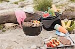 Barbecue on a river bank Stock Photo - Premium Royalty-Free, Artist: Kevin Dodge, Code: 659-03529487