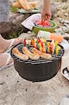 Barbecue on a river bank Stock Photo - Premium Royalty-Free, Artist: Kevin Dodge, Code: 659-03529490