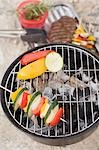 Vegetables on barbecue, meat and kebabs in dish Stock Photo - Premium Royalty-Free, Artist: Kevin Dodge, Code: 659-03529492