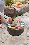 Barbecue on a river bank Stock Photo - Premium Royalty-Free, Artist: Kevin Dodge, Code: 659-03529499