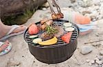 Woman barbecuing food on a river bank Stock Photo - Premium Royalty-Free, Artist: Kevin Dodge, Code: 659-03529500