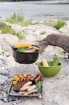 Barbecue on a river bank Stock Photo - Premium Royalty-Free, Artist: Kevin Dodge, Code: 659-03529507
