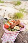 Plate of grilled food on tree trunk on river bank Stock Photo - Premium Royalty-Free, Artist: Kevin Dodge, Code: 659-03529511