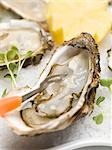 Fresh oysters with cress and lemon Stock Photo - Premium Royalty-Freenull, Code: 659-03530464